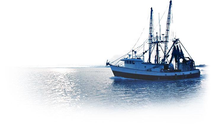 seafood-03